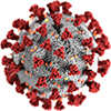 COVID-19 Virus Resource